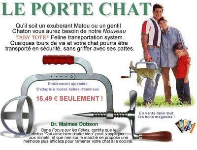 invention insolite : Le porte chat